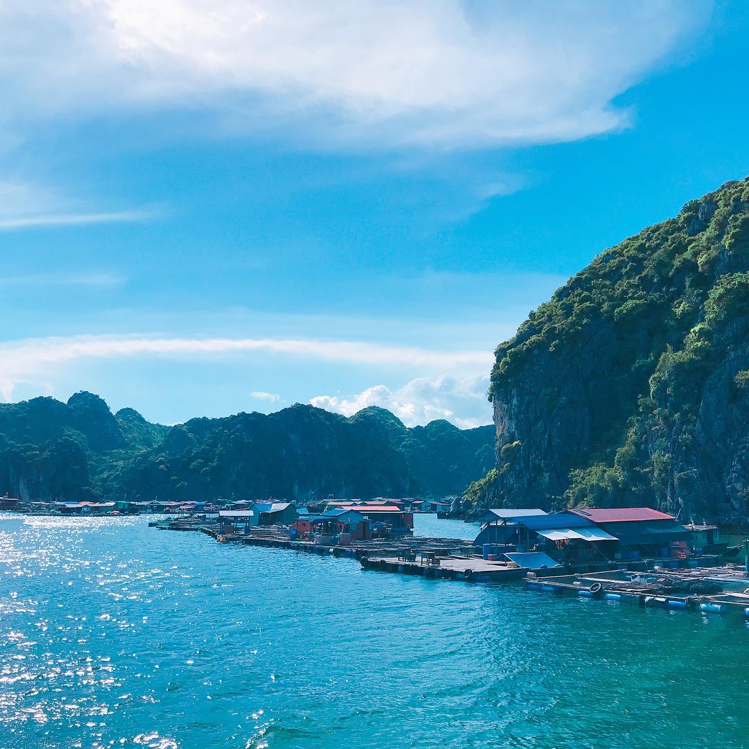 """Tour Ha Long - Đảo Titop - Điểm du lịch Hạ Long cho những giây phút """"sống ảo"""" trọn vẹn"""